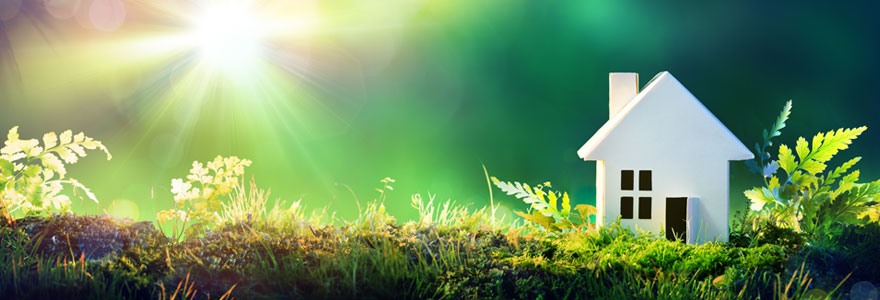 Opter pour l'énergie verte